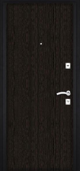 Дверь входная М100
